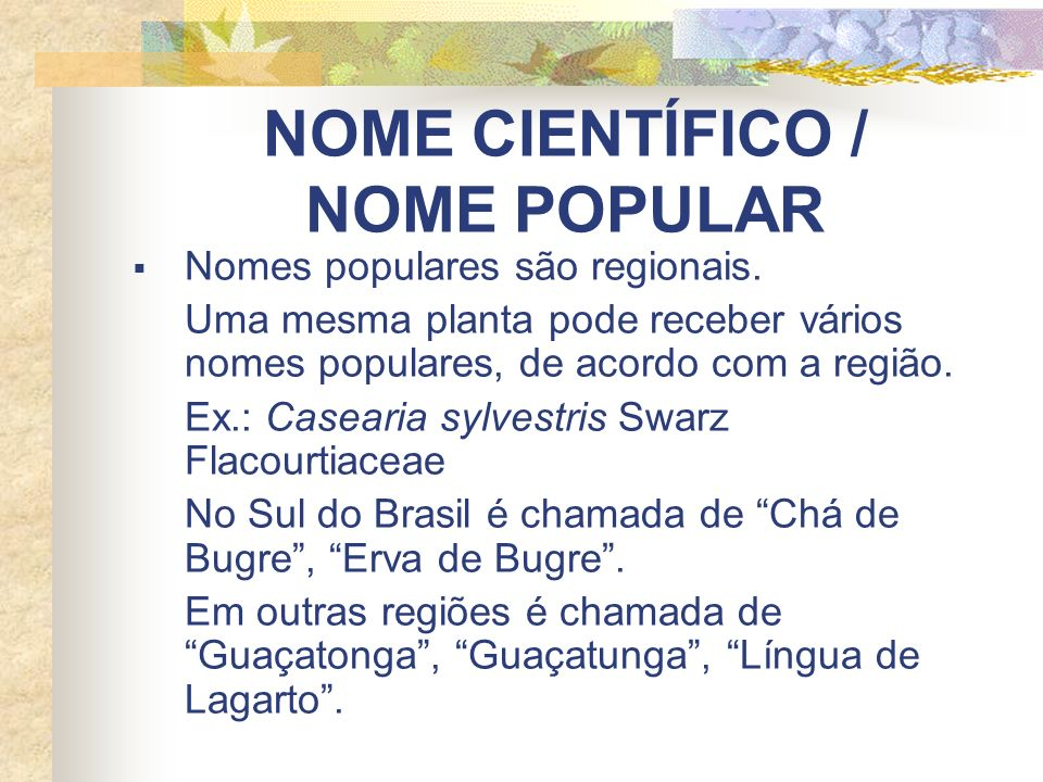 NOME CIENTÍFICO / NOME POPULAR