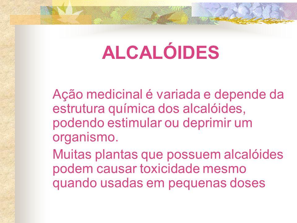 ALCALÓIDES Ação medicinal é variada e depende da estrutura química dos alcalóides, podendo estimular ou deprimir um organismo.