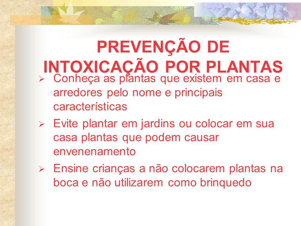 PREVENÇÃO DE INTOXICAÇÃO POR PLANTAS