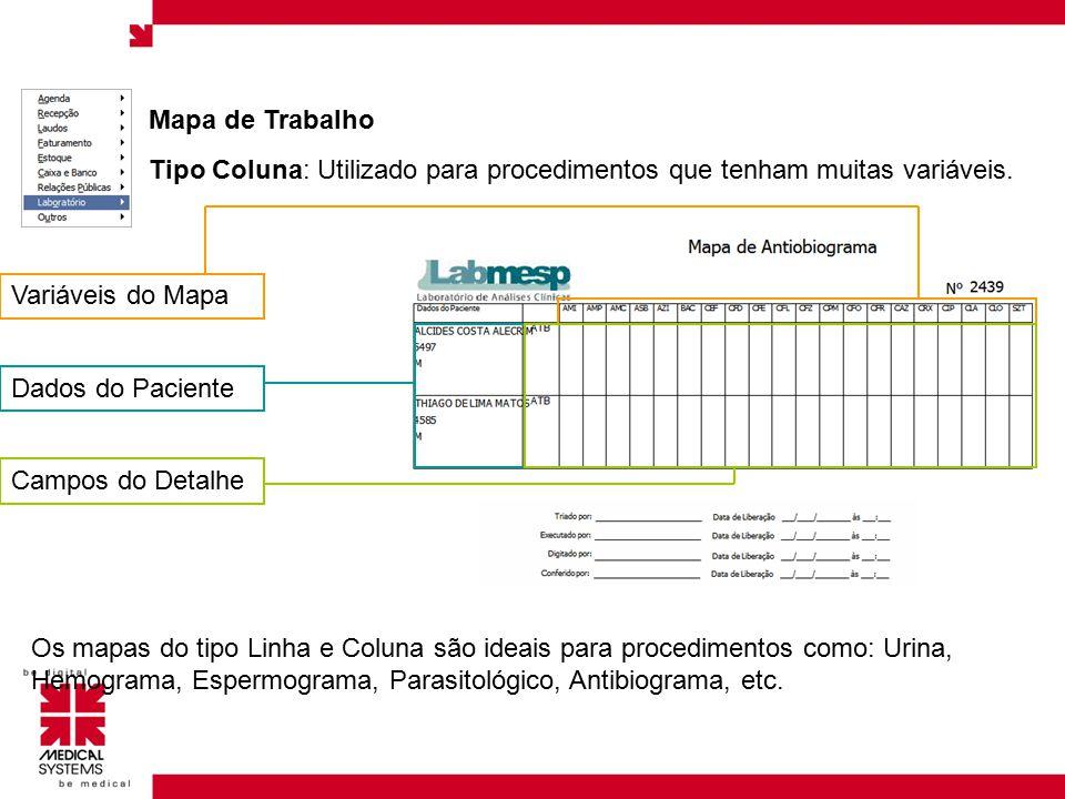 Mapa de Trabalho Tipo Coluna: Utilizado para procedimentos que tenham muitas variáveis. Variáveis do Mapa.