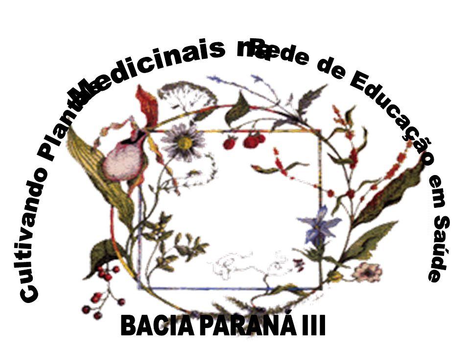 Medicinais na Rede de Educação Cultivando Plantas em Saúde