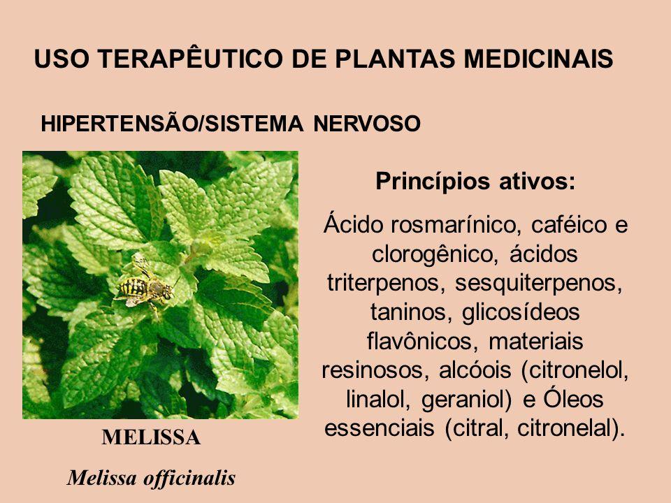 USO TERAPÊUTICO DE PLANTAS MEDICINAIS