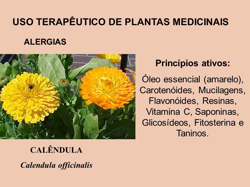 USO TERAPÊUTICO DE PLANTAS MEDICINAIS Calendula officinalis