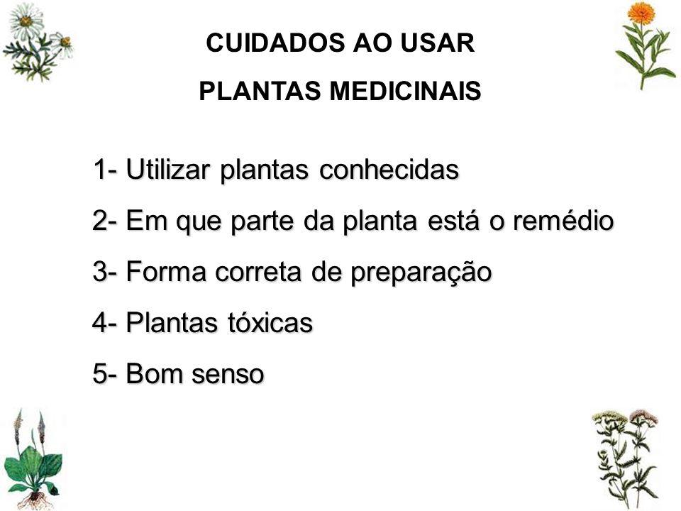 1- Utilizar plantas conhecidas