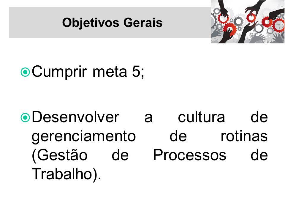 Objetivos Gerais Cumprir meta 5; Desenvolver a cultura de gerenciamento de rotinas (Gestão de Processos de Trabalho).