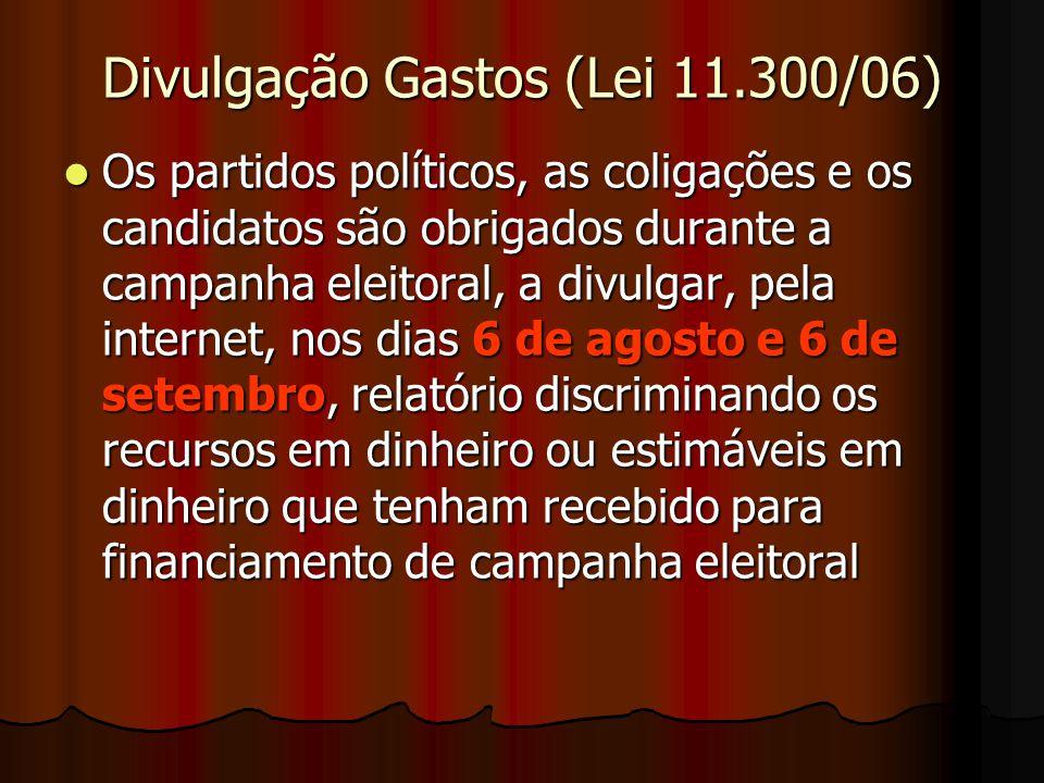 Divulgação Gastos (Lei 11.300/06)