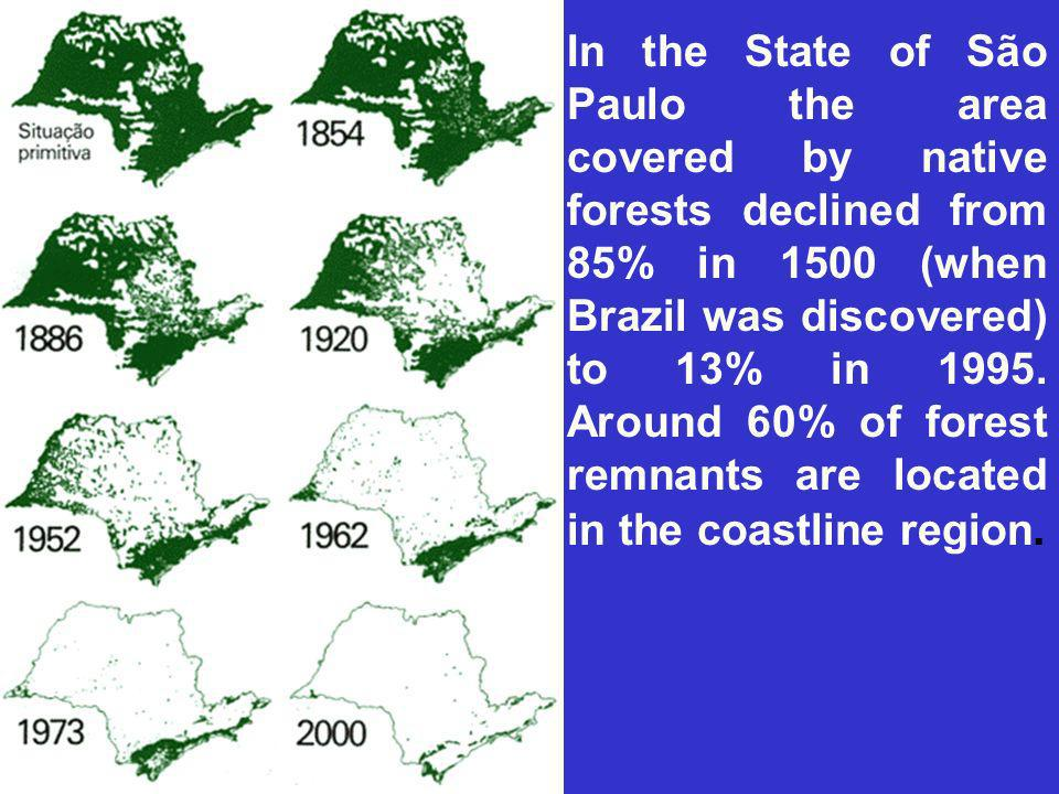 In the State of São Paulo the area covered by native forests declined from 85% in 1500 (when Brazil was discovered) to 13% in 1995.