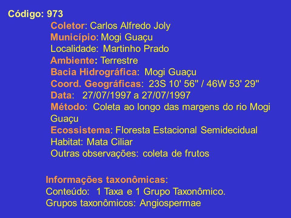 Código: 973Coletor: Carlos Alfredo Joly. Município: Mogi Guaçu. Localidade: Martinho Prado. Ambiente: Terrestre.