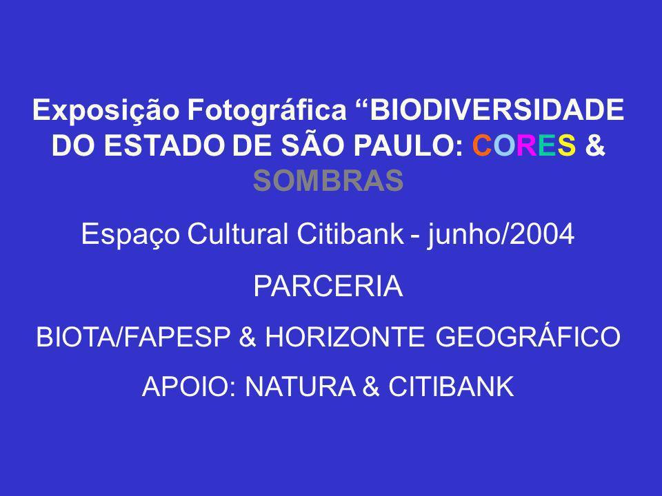 Espaço Cultural Citibank - junho/2004 PARCERIA