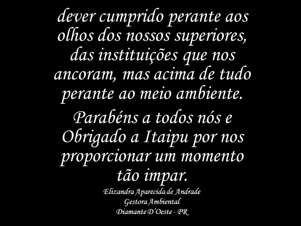 Elizandra Aparecida de Andrade