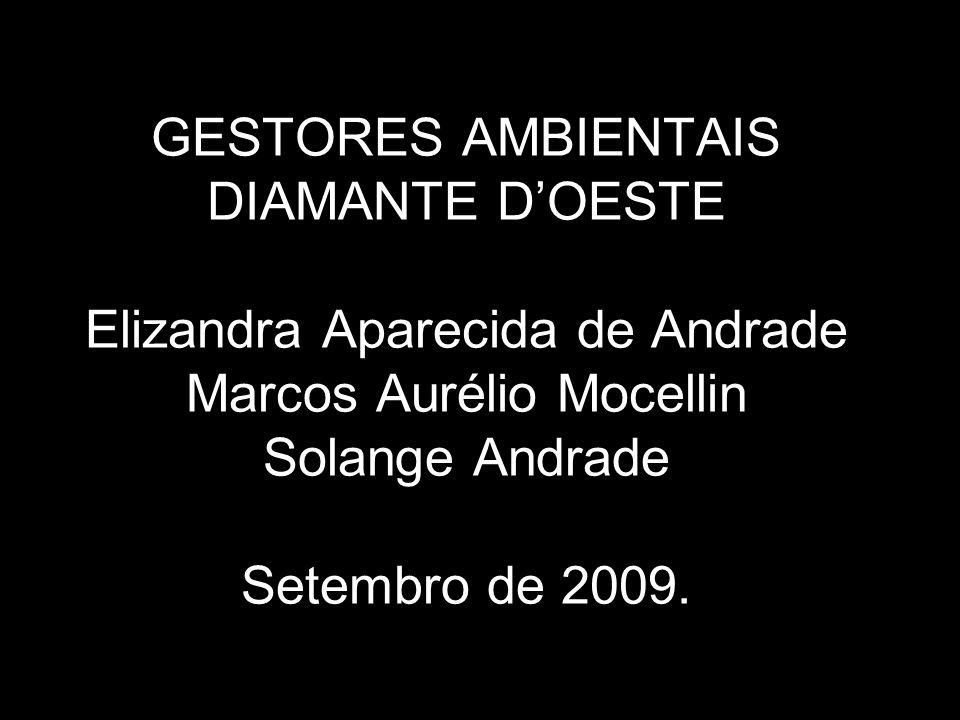 GESTORES AMBIENTAIS DIAMANTE D'OESTE Elizandra Aparecida de Andrade Marcos Aurélio Mocellin Solange Andrade Setembro de 2009.