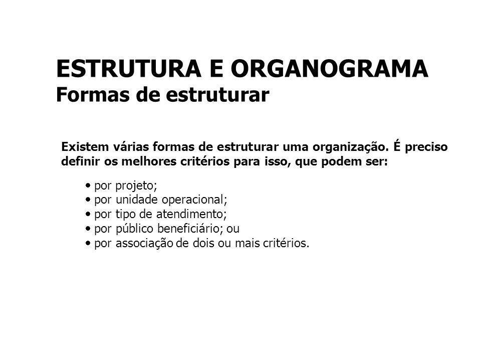 ESTRUTURA E ORGANOGRAMA