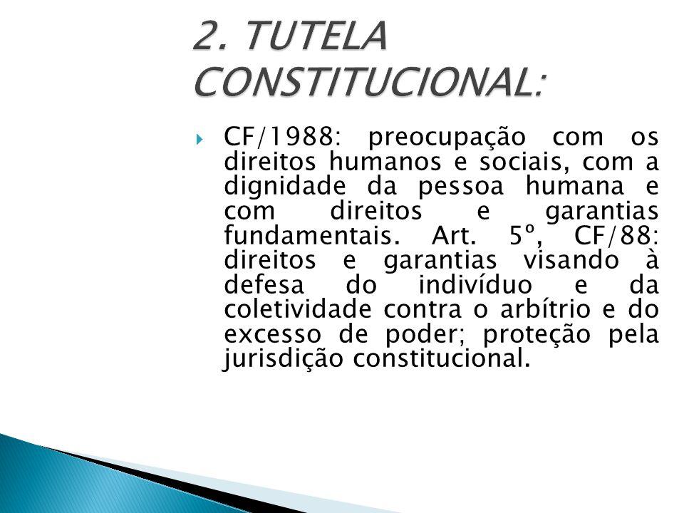 2. TUTELA CONSTITUCIONAL: