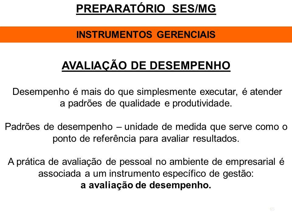 PREPARATÓRIO SES/MG AVALIAÇÃO DE DESEMPENHO