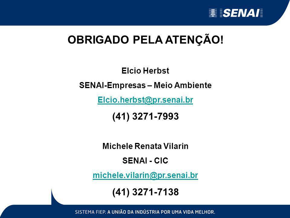 SENAI-Empresas – Meio Ambiente Michele Renata Vilarin