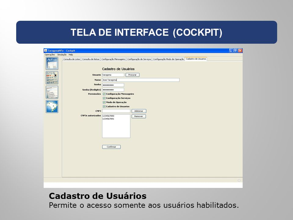 TELA DE INTERFACE (COCKPIT)