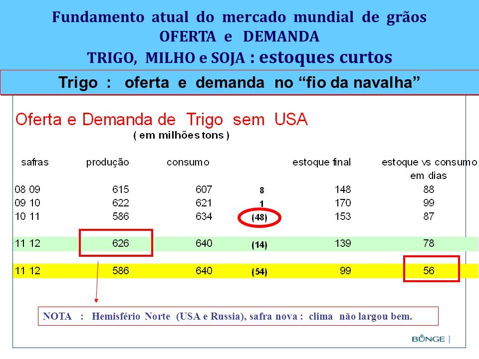 Trigo : oferta e demanda no fio da navalha