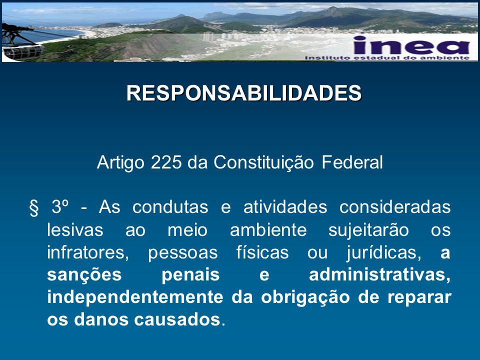 Artigo 225 da Constituição Federal