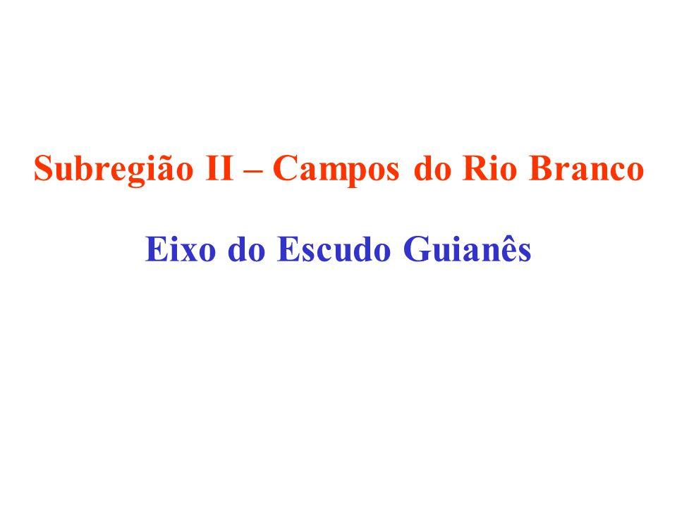 Subregião II – Campos do Rio Branco