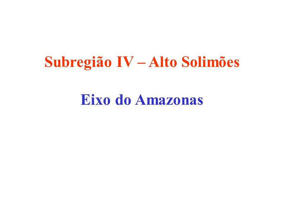 Subregião IV – Alto Solimões