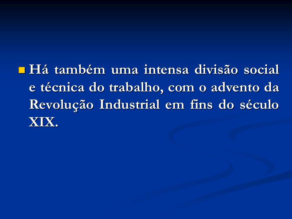 Há também uma intensa divisão social e técnica do trabalho, com o advento da Revolução Industrial em fins do século XIX.