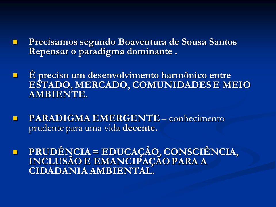 Precisamos segundo Boaventura de Sousa Santos Repensar o paradigma dominante .