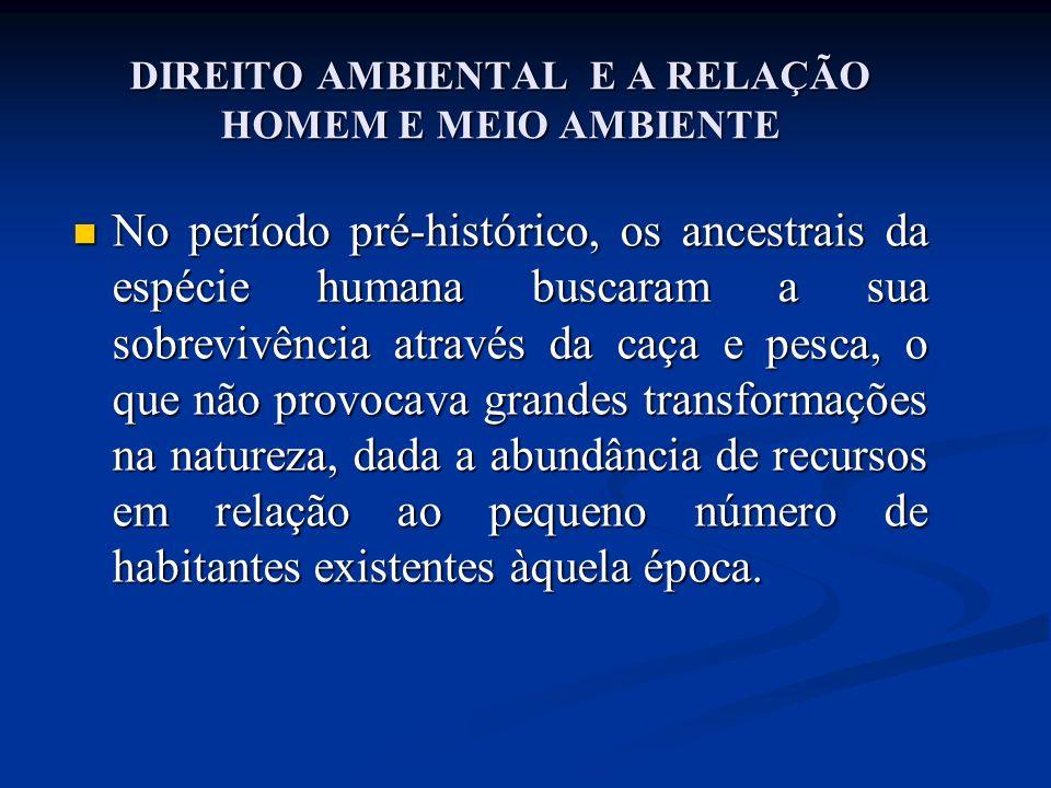 DIREITO AMBIENTAL E A RELAÇÃO HOMEM E MEIO AMBIENTE