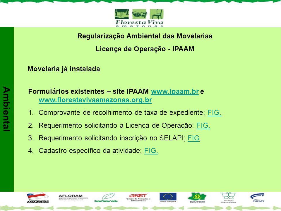 Regularização Ambiental das Movelarias Licença de Operação - IPAAM
