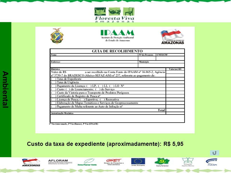 Ambiental Custo da taxa de expediente (aproximadamente): R$ 5,95