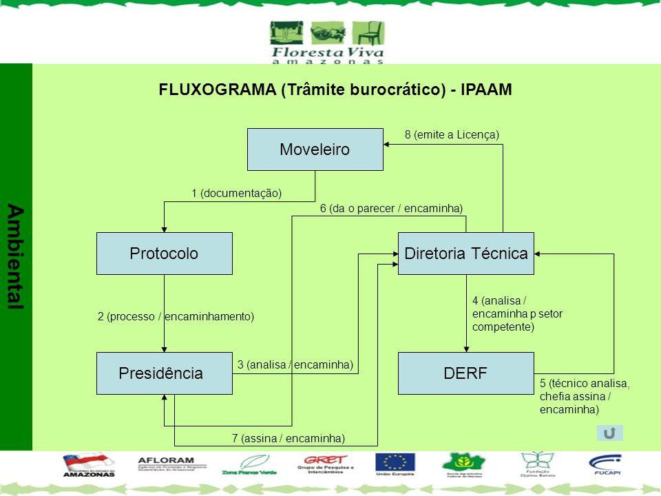 FLUXOGRAMA (Trâmite burocrático) - IPAAM