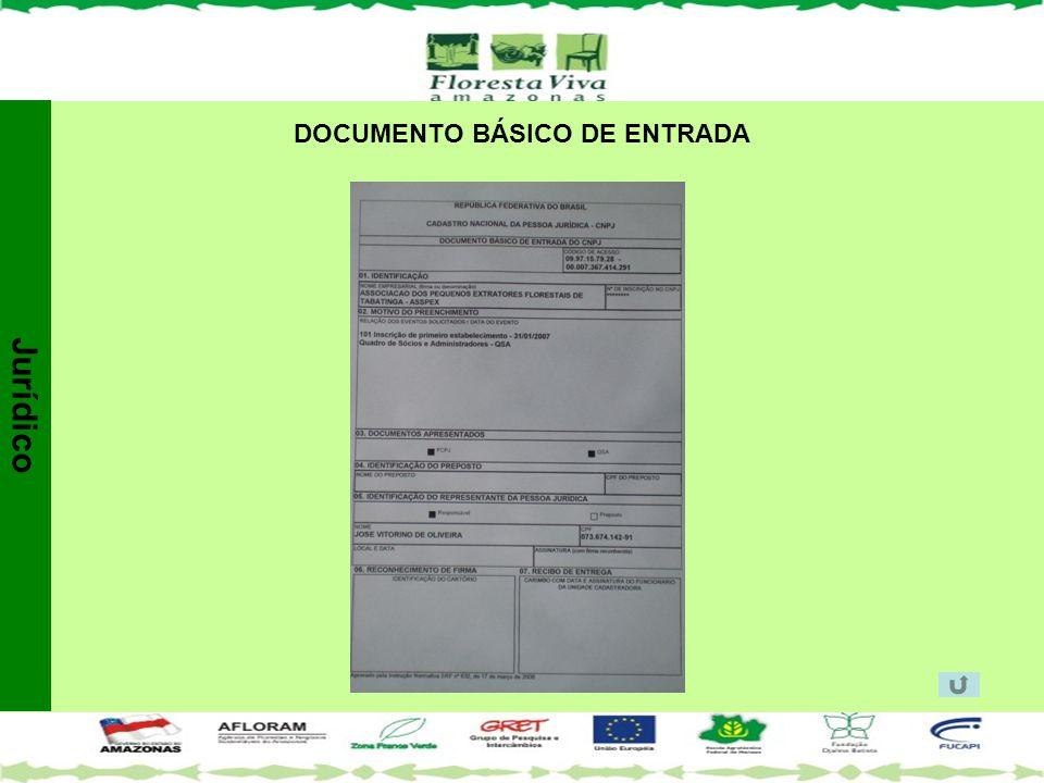 DOCUMENTO BÁSICO DE ENTRADA