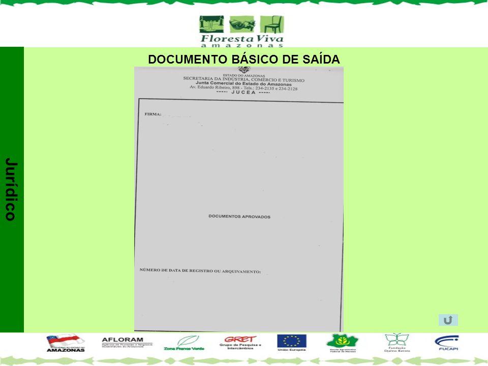 DOCUMENTO BÁSICO DE SAÍDA