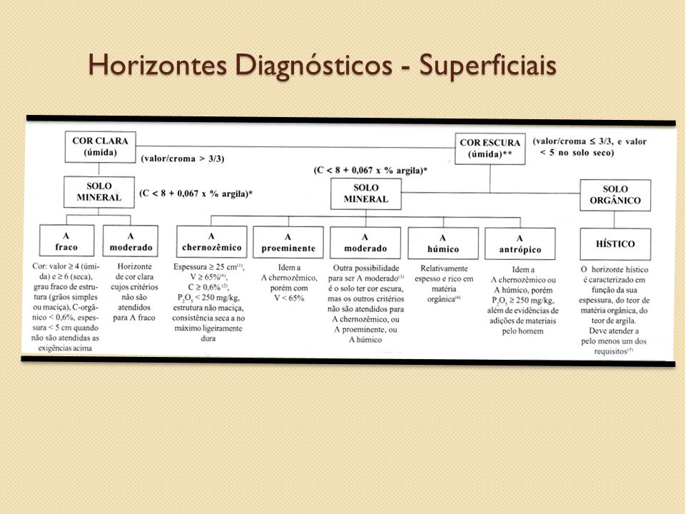 Horizontes Diagnósticos - Superficiais
