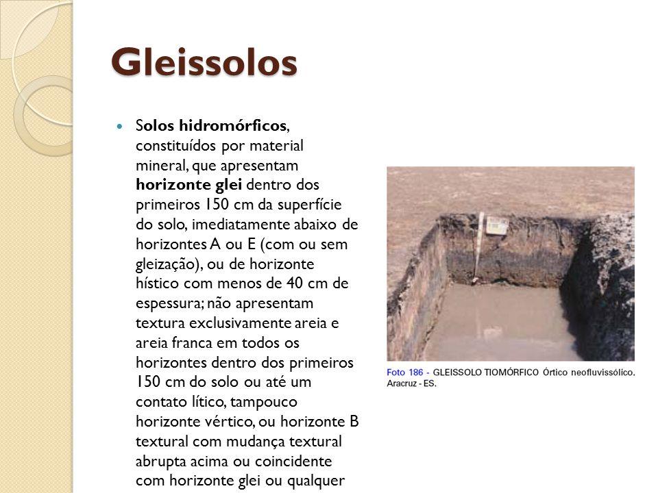 Gleissolos