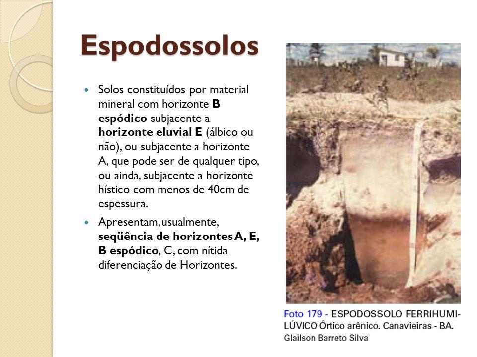 Espodossolos