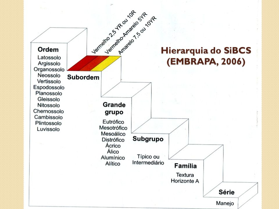 Hierarquia do SiBCS (EMBRAPA, 2006)