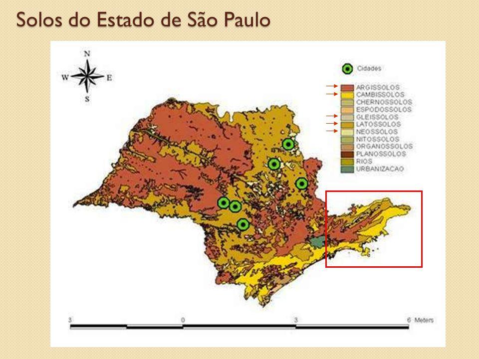 Solos do Estado de São Paulo