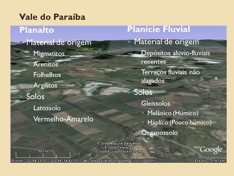 Vale do Paraíba Planalto Planície Fluvial Material de origem