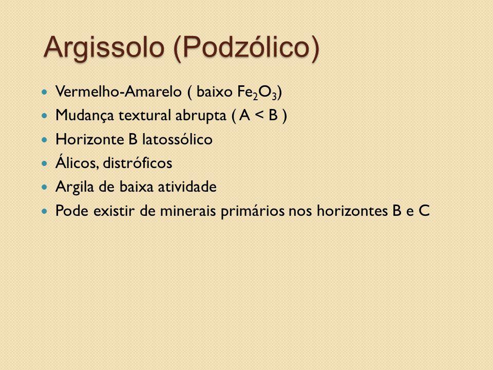 Argissolo (Podzólico)
