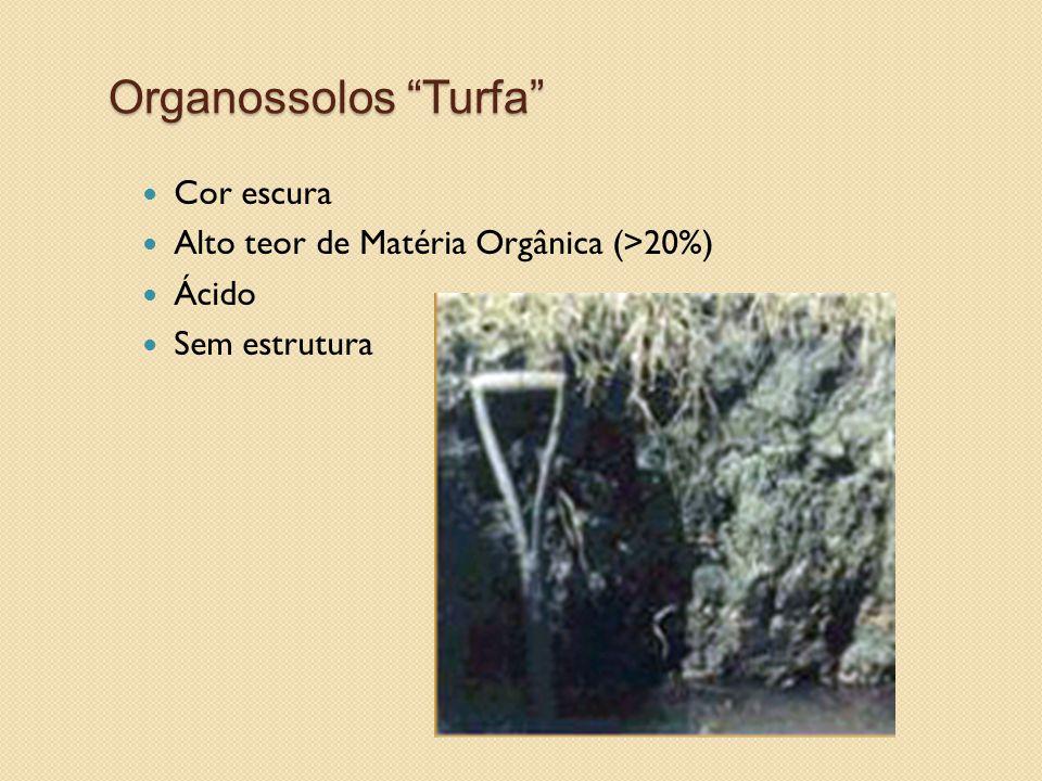Organossolos Turfa Cor escura