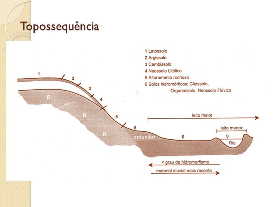 Topossequência