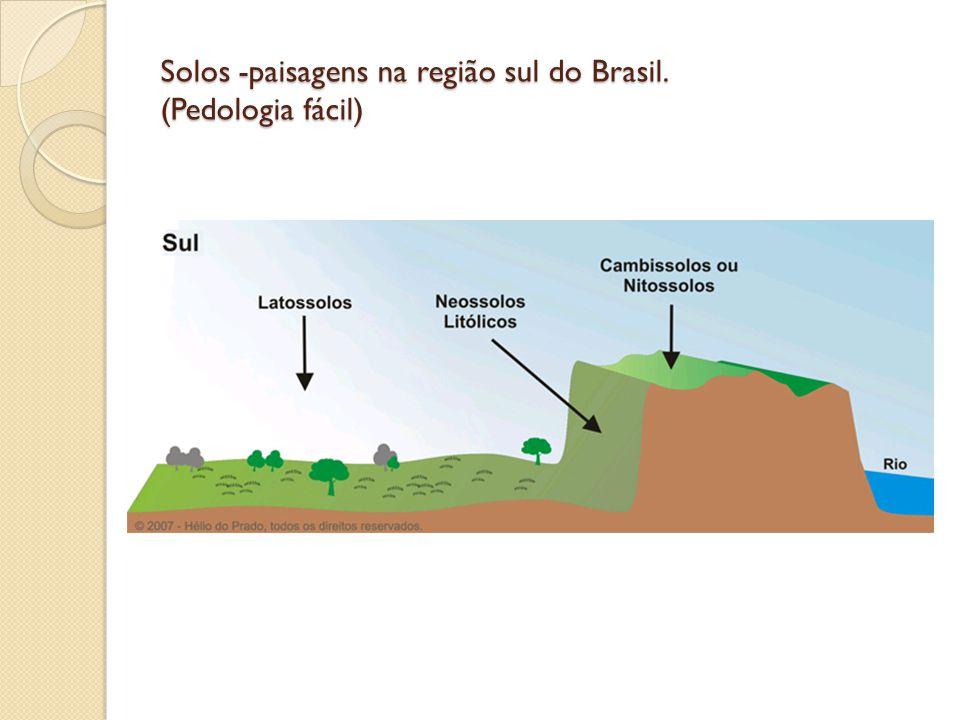 Solos -paisagens na região sul do Brasil. (Pedologia fácil)