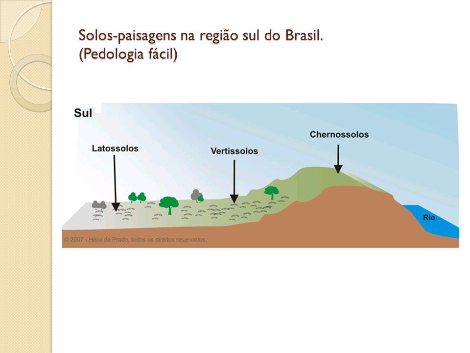 Solos-paisagens na região sul do Brasil. (Pedologia fácil)
