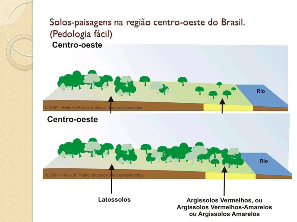 Solos-paisagens na região centro-oeste do Brasil. (Pedologia fácil)