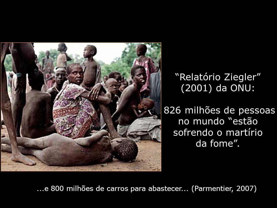 Relatório Ziegler (2001) da ONU: