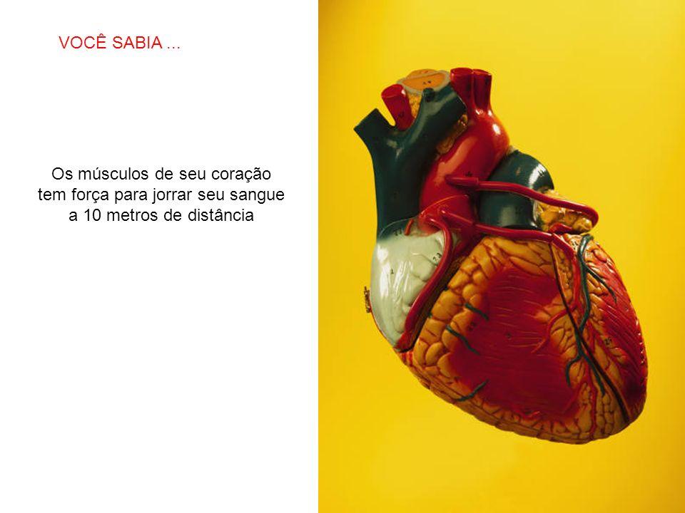 VOCÊ SABIA ... Os músculos de seu coração tem força para jorrar seu sangue a 10 metros de distância