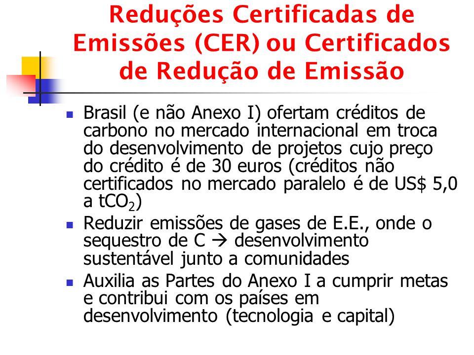 Reduções Certificadas de Emissões (CER) ou Certificados de Redução de Emissão