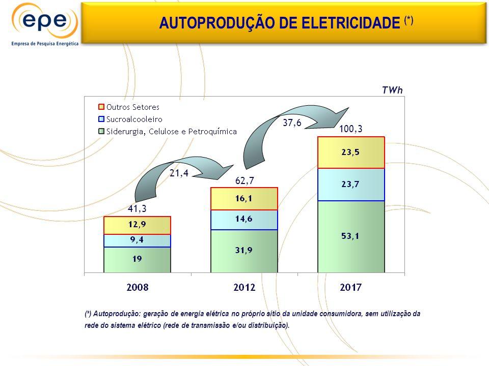 AUTOPRODUÇÃO DE ELETRICIDADE (*)