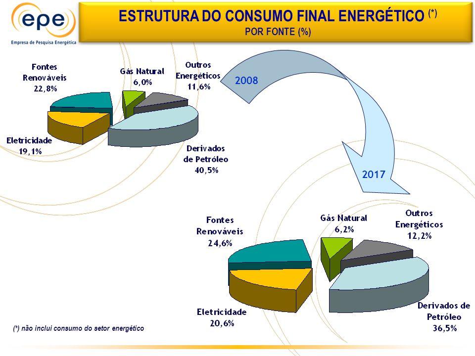 ESTRUTURA DO CONSUMO FINAL ENERGÉTICO (*)
