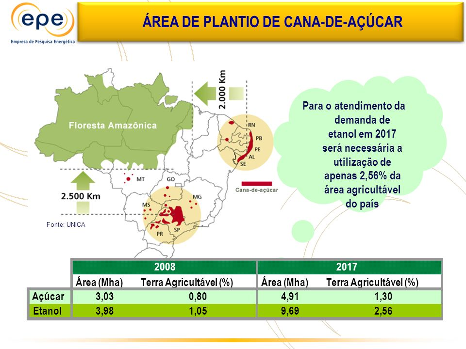 ÁREA DE PLANTIO DE CANA-DE-AÇÚCAR